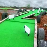 Things to do around Geraldine, mini golf